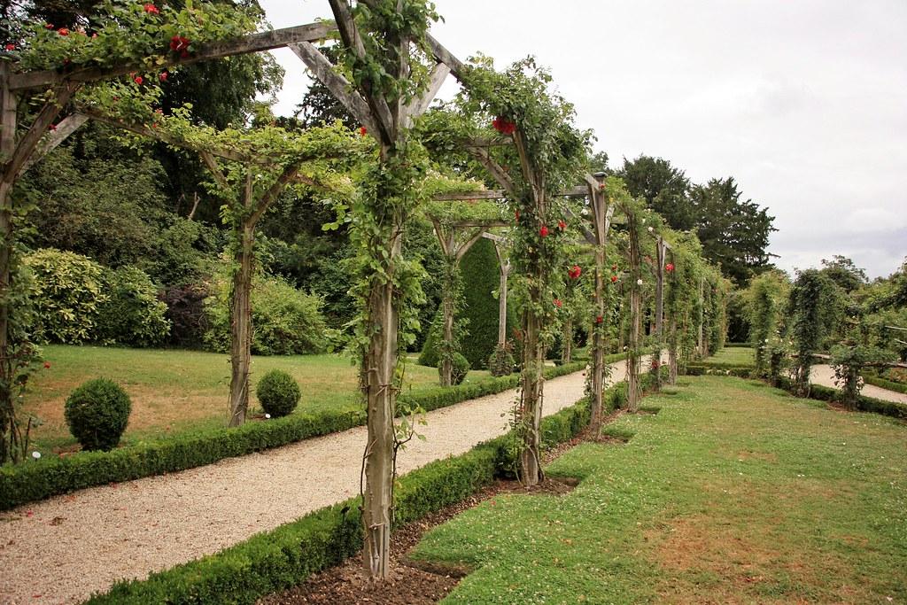 Parc de Bagatelle, Paris, Paris Park, Things to do Paris, Rose Garden, Flowers