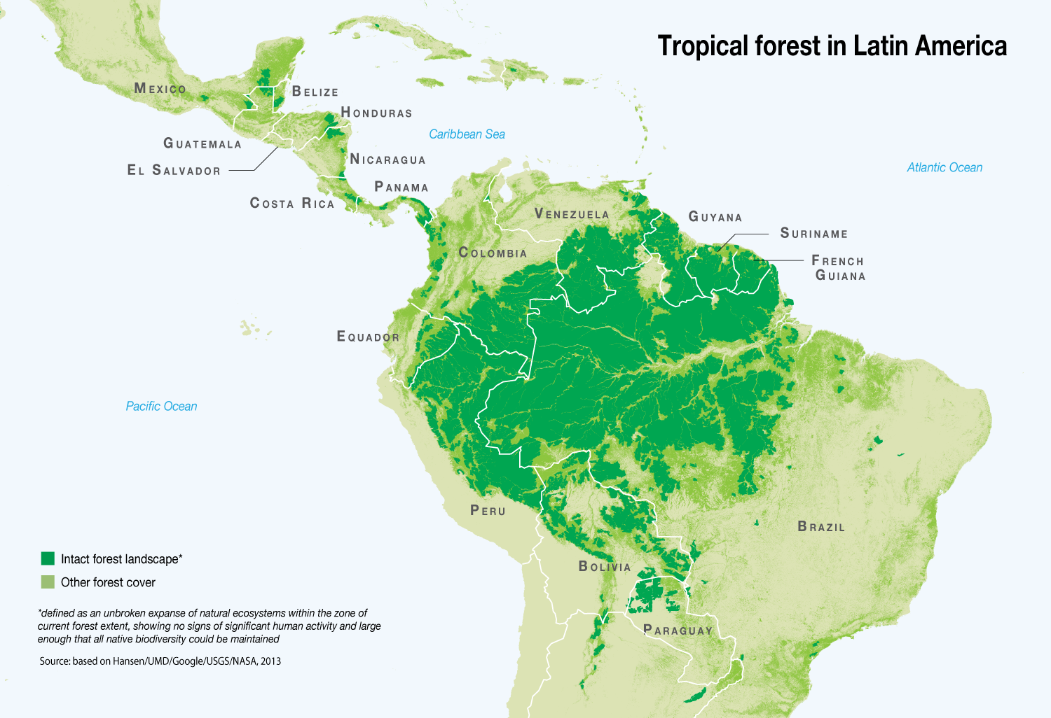 Tropical Forest In Latin America Grid Arendal