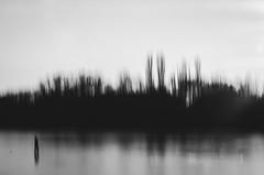 Landscape: Black and White