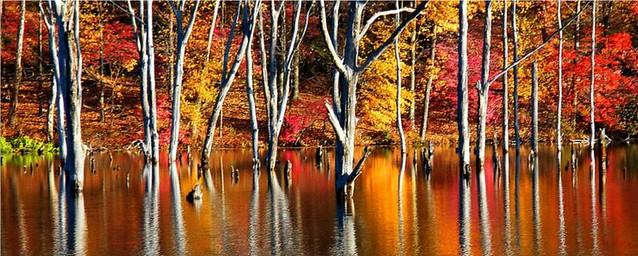 Monksville Reservoir in Color