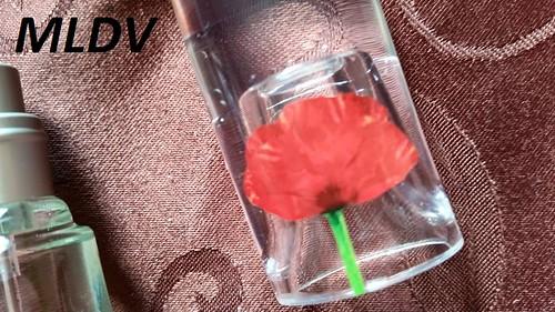 flower by kenzo avis