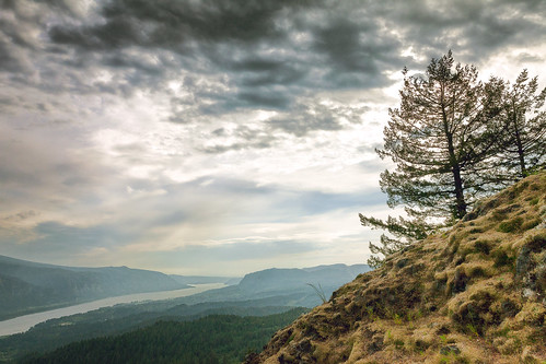 cliff tree nature water weather canon landscape spring view cloudy outdoor hiking hill scenic may peak overcast pacificnorthwest vista overlook pnw wta columbiarivergorge swwashington hamiltonmountain 5dm2 5dmii