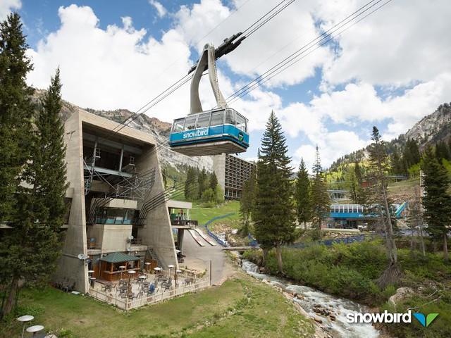 Snowbird gondola summer