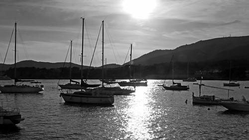 image_calvi_carrer_antoni_m_alcover_marina