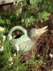 Ceramic duck watering can