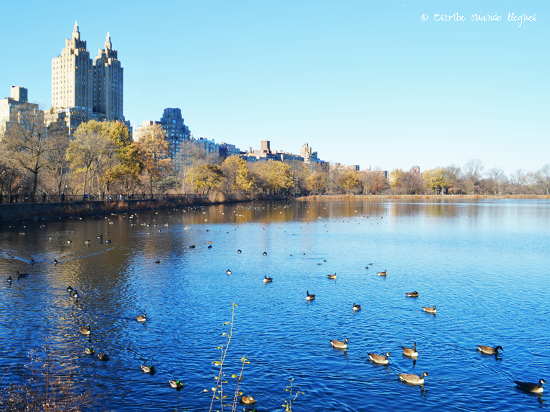 Que_ver_Nueva_York_Central_Park