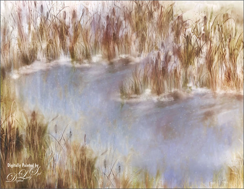 Image of a wintry pond