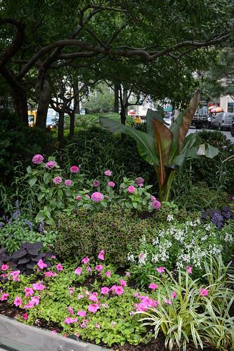 FilipWolak-LSBID-Gardens-8187