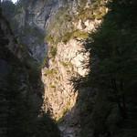 2015_Tirol_046