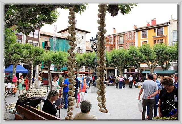 Feria de los ajos en Briviesca (5)