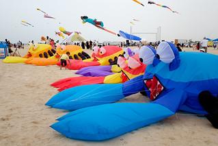 Crab kites!