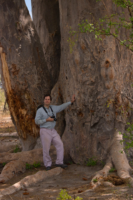 Andrew and the baobab tree