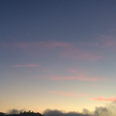 Teeny tiny bright spot in the upper left is the aligned planets - Jupiter and Venus - as dusk deepens - view from #bernalwood