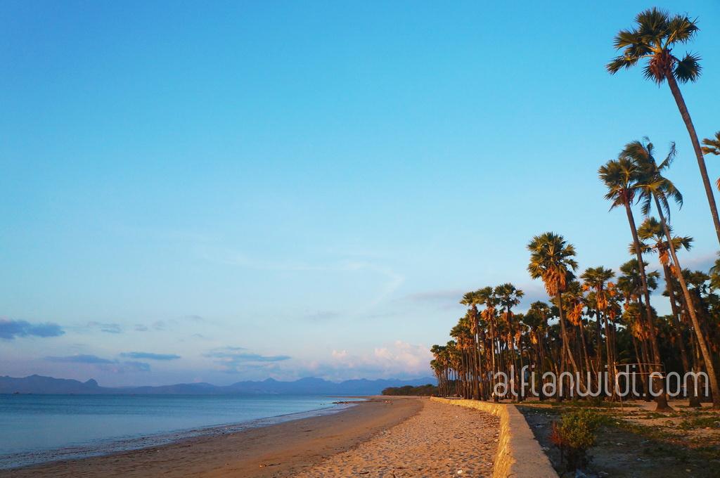 KUPANG_Pantai Lasiana, 12km sebelah utara pusat kota Kupang_editWM
