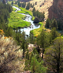Crooked River Tributary