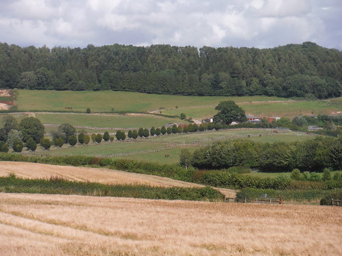 Withyslade Farm and Castle Ditches Iron Age Hill Fort Site