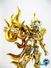 Aiolia - [Imagens] Aiolia de Leão Soul of Gold 18565058983_20fdfc405d_t
