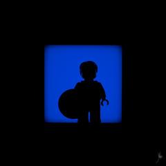Shadow (18/100) - Captain