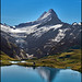 Grindelwald ,The Bachalpsee & the Wetterhorn .No.9094.