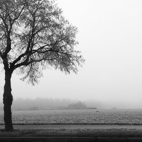 München mist
