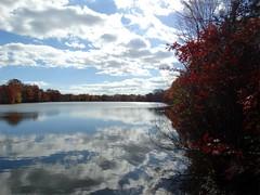 Wantagh - Twin Lakes Preserve - Autumn (82)