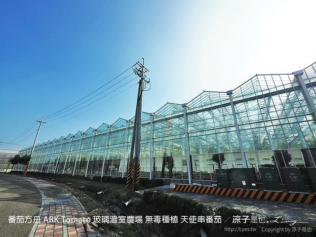 番茄方舟 ARK Tomato 玻璃溫室農場 無毒種植 天使串番茄 58