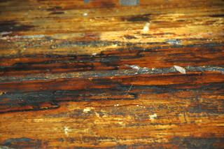 Sandstone with fault slickenside (Lakota Sandstone, Lower Cretaceous; Rapid City, South Dakota, USA) 2