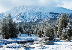 Early Snow, Yosemite High Country 2015