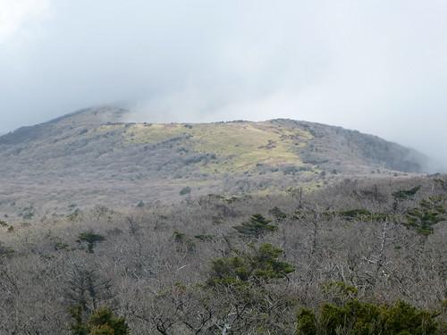 Co-Jejudo-Hallisan-Montée-Yeongsil (14)