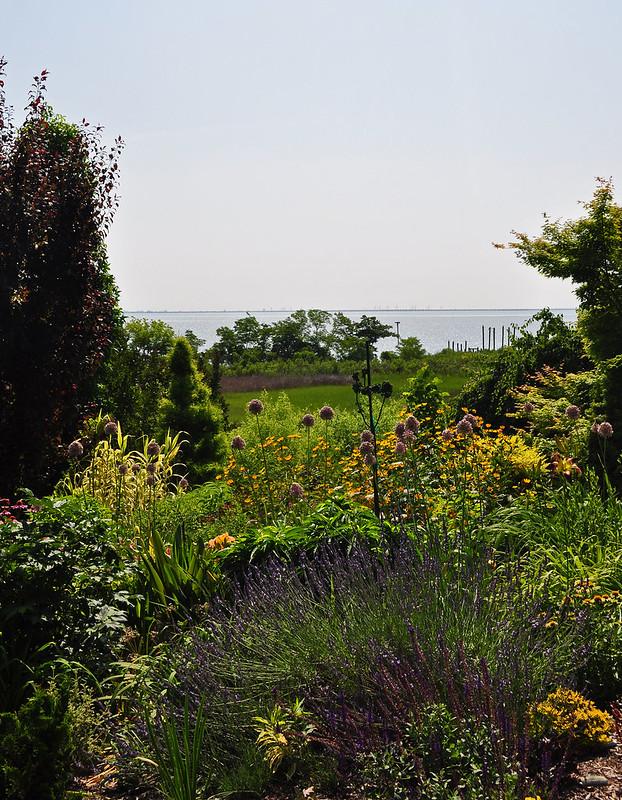 Pinkham Garden (5)