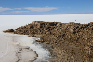 Incahuasi island.  Uyuni Salt Flats, Bolivia.
