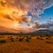 Sierra Storm by rajaramki
