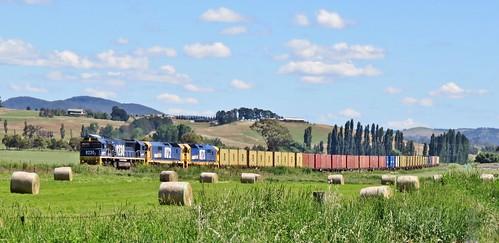 Passing between the paddocks - Locomotives 8230+8172+8173 bring Sydney bound train #8138 through Perthville, NSW