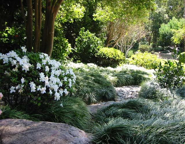 Ideas for landscaping: Small garden landscaping ideas nz