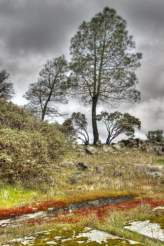 california travel foothills northerncalifornia landscape sierra mariposa hdr highdynamicrange sdosremedios restfulnest size3x2 wiredeye