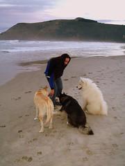 Mistisa, Black One, Zhar and Sunshine