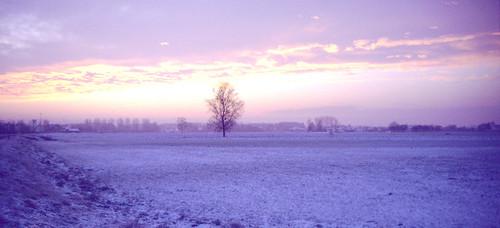 sunrise geotagged dawn bodensee wintermorning nikonf801s morgenröte wintermorgen oberschwaben geo:tool=gmif kehlen hirschlatt meckenbeuren hiwosomoshots hisomowoshots geo:lat=47689081 geo:lon=9528236 geotaggedgermany