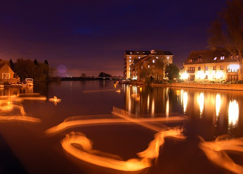 Swans on a Still Night