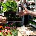 Columbia Road Flower Market by ponyintheair