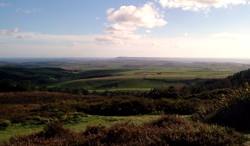 South Dorset Downs