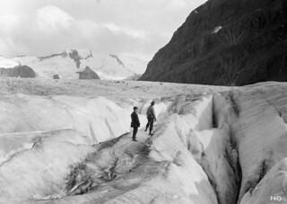 Robson Glacier crevasse / Crevasse dans un glacier sur le mont Robson