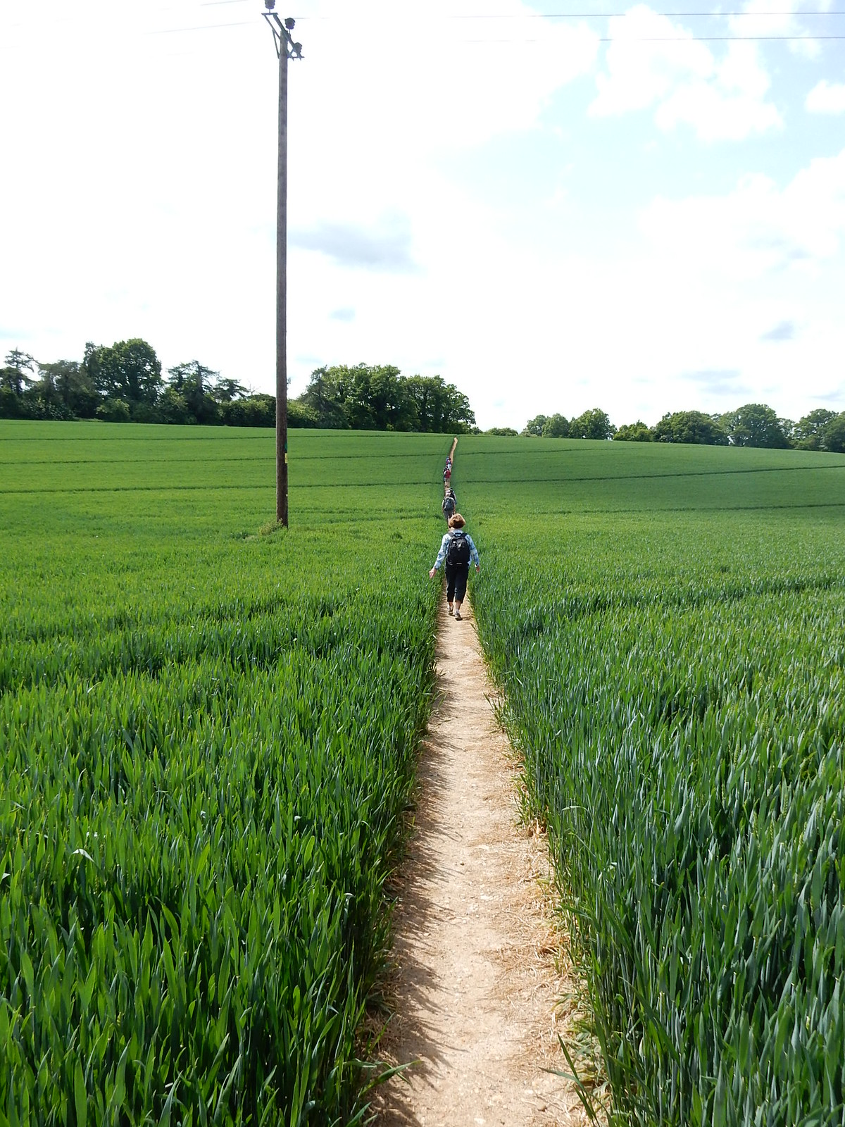 Long path, Longparish Whitchurch to Andover