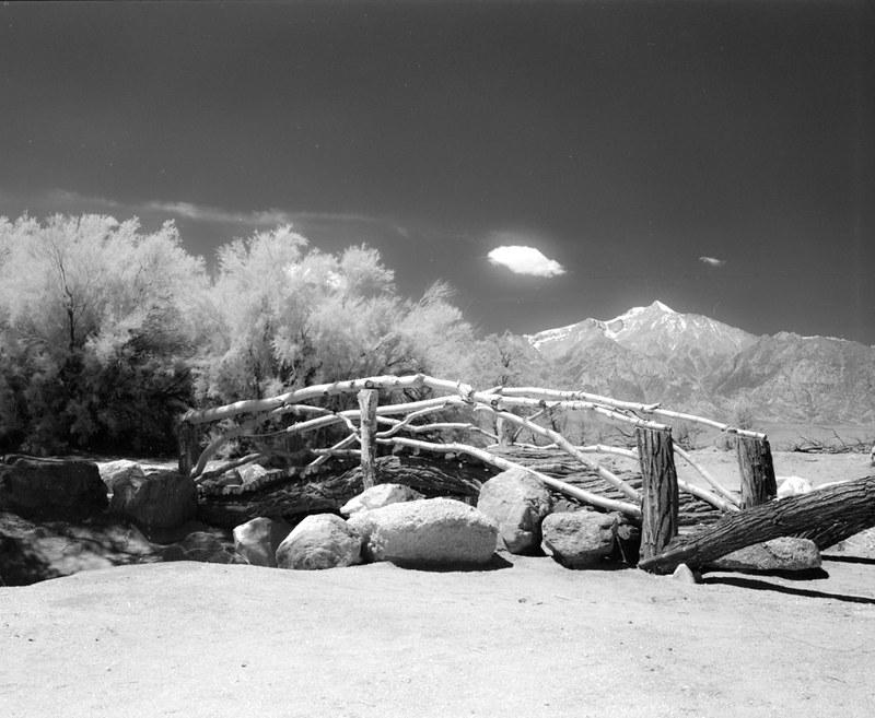 ManzanarJune2015-002.jpg