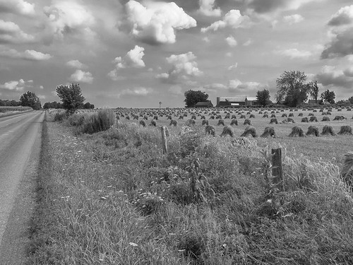 ohio blackandwhite bw monochrome field rural geotagged nikon raw farm country crop coolpix nrw p30 cs6 waynecountyohio niksep