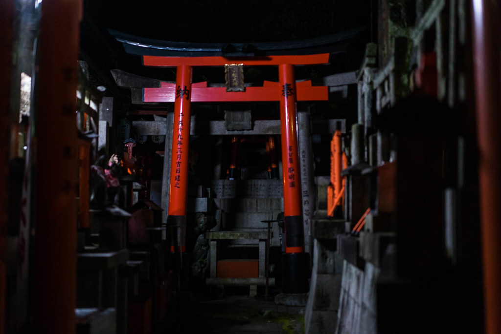 Kyoto Travel④