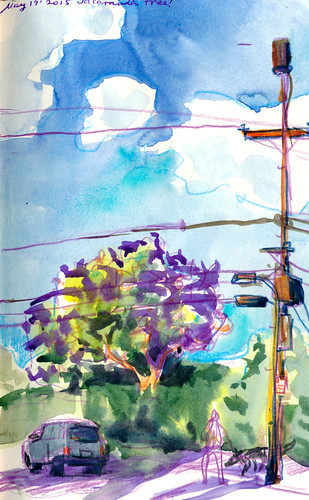 Sketchbook #90: Jacaranda Tree