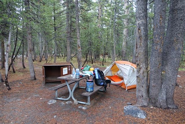 Tuolumne Campground, m942