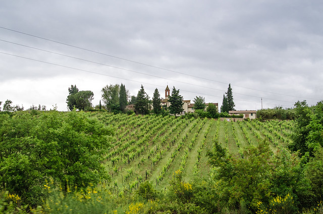 20150522-Tuscan-Wine-Country-0308