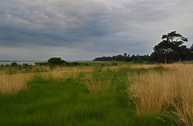 Metompkin Bay (9)