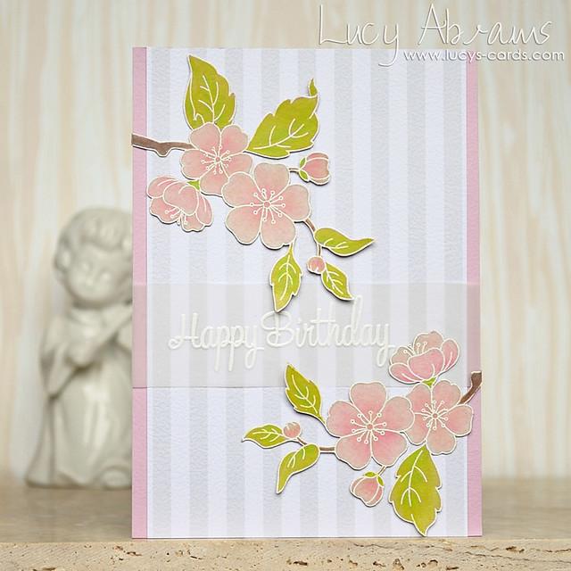 Birthday Blossom by Lucy Abrams